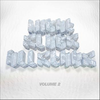 Various Artists - Night Slugs Allstars Volume 2