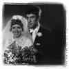 Steve Bug - Bride & Bridegroom