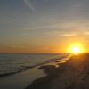 David Jordan - Florida Gulf Beach Meditation