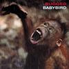 Babybird - Bugged