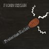 Fionn Regan - Protection Racket