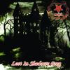 Morgul - Lost In Shadows Grey