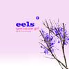 Eels - Spectacular Girl