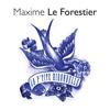 Maxime Le Forestier - La P'Tite Hirondelle