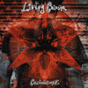 Living Colour - Collideascope