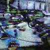 Cabaret Voltaire - Archive #828285 Live