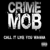 Crime Mob - Call It Like You Wanna - Single