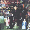 Steve Wynn - What I Did After My Band Broke Up/Visitation Rights (2CD)