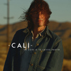 Cali - Ce soir je te laisse partir (Radio Edit) - Single