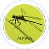 Agoria - Magnolia - EP