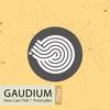 Gaudium - Psilocybin