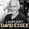 David Essex - Lamplight