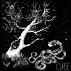 Curse - Curse