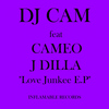 Dj Cam - Love Junkee (feat. Cameo)