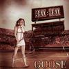 Goose - 30:40