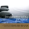 David Haas - Instruments at Prayer, Vol. 2