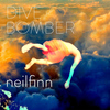Neil Finn - Divebomber