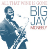 Big Jay McNeely - All That Wine Is Gone