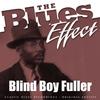 Blind Boy Fuller - The Blues Effect - Blind Boy Fuller