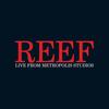 Reef - Live from Metropolis Studios
