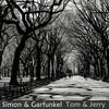 Simon & Garfunkel - The Best of the Simon & Garfunkel, The Tom & Jerry Years