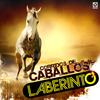 Laberinto - Corridos de Caballos