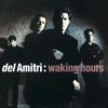 Del Amitri - Waking Hours (Re-Presents)