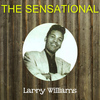 Larry Williams - The Sensational Larry Williams