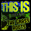 The Grass Roots - This Is the Grass Roots