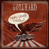 Gotthard - Feel What I Feel