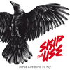 Skip the Use - Birds Are Born To Fly