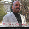 Walter Beasley - Sax Meditations II: Silver Lining