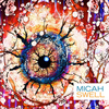 Micah - Swell