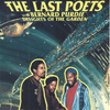The Last Poets - Delights of the Garden (feat. Bernard Purdie)
