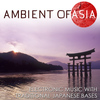 Mr. Ambient Donovan - Ambient of Asia. Electronic Music with Traditional Japanese Bases