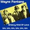 Wayne Fontana - Groovy Kind of Love