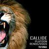 Callide - Platoon / Rendezvous