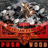 Lutan Fyah - Push Wood - Single