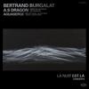 Bertrand Burgalat - La nuit est là - Concerts