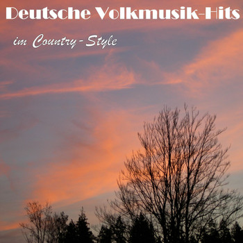 Various Artists - Deutsche Volksmusik Hits im Country-Style