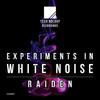 Raiden - Experiments in White Noise