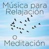 Richard Clayderman - Musica para Relajación o Meditación: 30 Canciones
