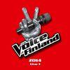 Multi Interprètes - The Voice of Finland 2014 Live 1 (Live)