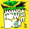 Elephant Man - Jamaica How Wi Do It - Single
