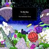 to my boy - The Habitable Zone