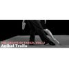 Aníbal Troilo - The Greats Of Tango, Vol. 2