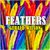 - Feathers
