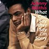 Johnny Mathis - What Can I Say After I Say I'm Sorry