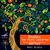- Emil Gilels, Eugen Jochum, Johannes Brahms: Two Piano Concertos
