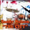 Sandy Nelson - The City